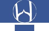 «Санкт-Петербургская ассоциация флебологов» (SPSP)
